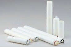 Coated Cellulose Acetate Membrane Cartridge Filter (TCY Type)