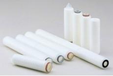 PTFE Membrane Cartridge Filter (TCF Type)